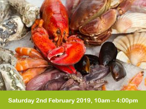Full day Fish course 2 feb 2019